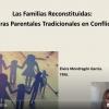 Premio modalidad TFM (II).Elvira Mondragón García